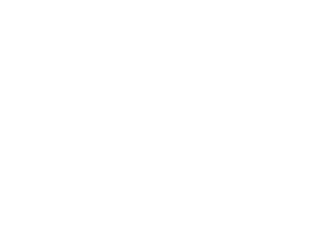 Shaffer Development